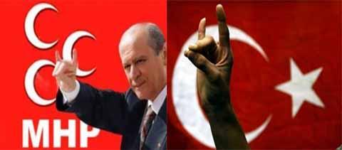 Türkiyədə bozqurdların nüfuzu artmağa başlayıb